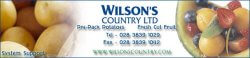 Wilson's country logo